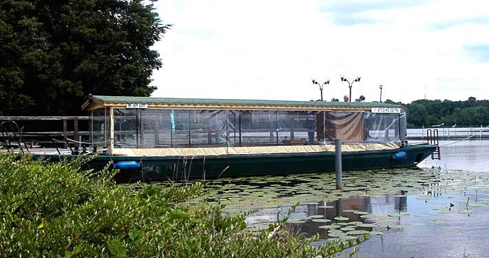Wasserkremser auf dem Wernsdorfer See
